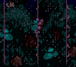 The first bonus room in Ropey Rampage from Donkey Kong Country