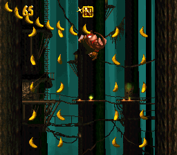 The N in the second Bonus Level of Tree Top Town from Donkey Kong Country