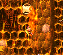 The location of the DK Coin in Rambi Rumble
