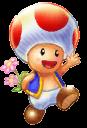 ToadFlowersArcadeGP2.png