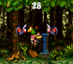 The Kongs and Squawks in the second Bonus Level of Stampede Sprint