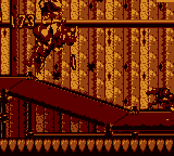 The Bonus Level of Tricky Temple in Donkey Kong Land