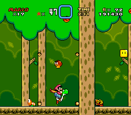 Forest of Illusion 1 SMW.png