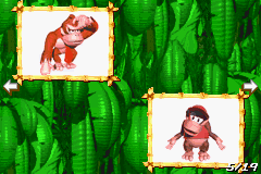 Page 5 of the Scrapbook in Donkey Kong Country