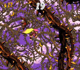The single Bonus Area of Screech's Sprint in Donkey Kong Country 2: Diddy's Kong Quest