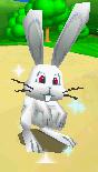 SM64DS Glowing Rabbit Screenshot.png
