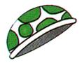 SMK NP art Green Shell.png