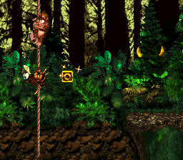 The O in Forest Frenzy from Donkey Kong Country