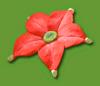 Crimson Candypop Bud Sticker.png