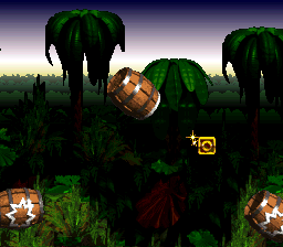 One of the O's in Barrel Cannon Canyon from Donkey Kong Country