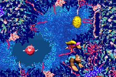 Dixie Kong and Kiddy Kong swim to the Bonus Coin of the second Bonus Level in Ripcurl Reef from the Game Boy Advance version
