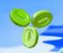 Green CoinNSMBU.png