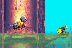 The Kongs find the Koin of Sunken Spruce in the Game Boy Advance remake of Donkey Kong Country 3