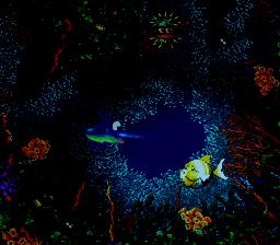 Floodlit Fish.png