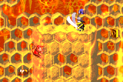 Diddy Kong near a Kutlass with a photograph above its head in Rambi Rumble in the Game Boy Advance version