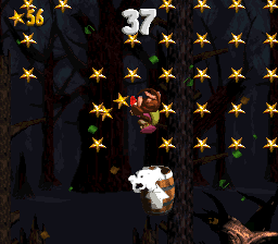 The Kongs in the second Bonus Area of Gusty Glade.