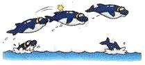 DolphinCuteSun.PNG
