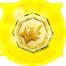 Grand Comet Medal