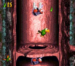 Squawks in the first Bonus Level of Springin' Spiders