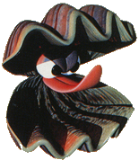 Artwork of a Clambo