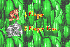 The player selection screen for starting a new game in Donkey Kong Country for the Game Boy Advance