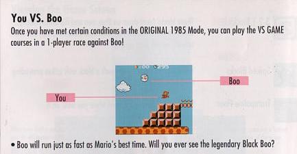 Super Mario Bros Deluxe manual scan about You VS Boo