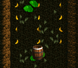 The second Bonus Level in Barrel Cannon Canyon from Donkey Kong Country