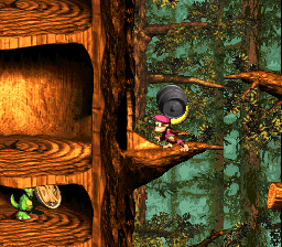 Donkey Kong Country 3: Dixie Kong's Double Trouble!: Dixie Kong holding a Steel Barrel toward a hollow tree entrance with a Koin below in Barrel Shield Bust-Up
