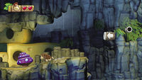 A Purple Fungus in Donkey Kong Country: Tropical Freeze