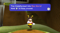 Mario becomes Bee Mario