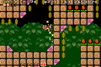 The level Slidin' the Slopes from Super Mario Advance 4.