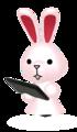StreetPass - Rabbit 2.png