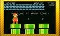 Collection SuperMarioBros NintendoBadgeArcade11.png