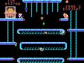 Donkey Kong Jr Coleco Adam.png