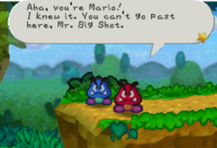 Red and Blue Goomba PM screenshot.png