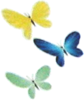 Artwork of the Butterflies in Super Mario Sunshine.