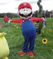 Mario suit Smash Bros commercial.png