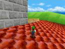 The roof of Mushroom Castle