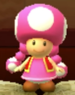 Toadette as viewed in the Character Museum from Mario Party: Star Rush