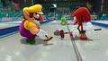 WiiU MarioSonic scrn05 E3.png