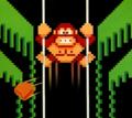 DK3 - NES cover artwork.png