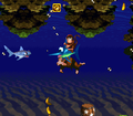 CoralCapers-SNES-O.png