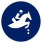 Event icon used for Equestrian - Jumping in Mario & Sonic at the Olympic Games Tokyo 2020