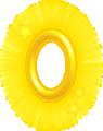 GoldenringNSMB2.png