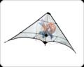 Kite large.png