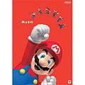 Mario poster big 3.jpg