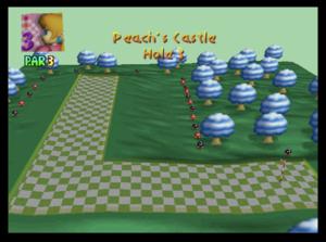 PeachCastleHole3.png