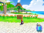 A Blue Coin in Pinna Park in the game Super Mario Sunshine.