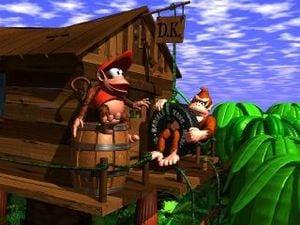DK's Treehouse art.jpg