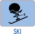 Ski (icon) - Game & Wario.png